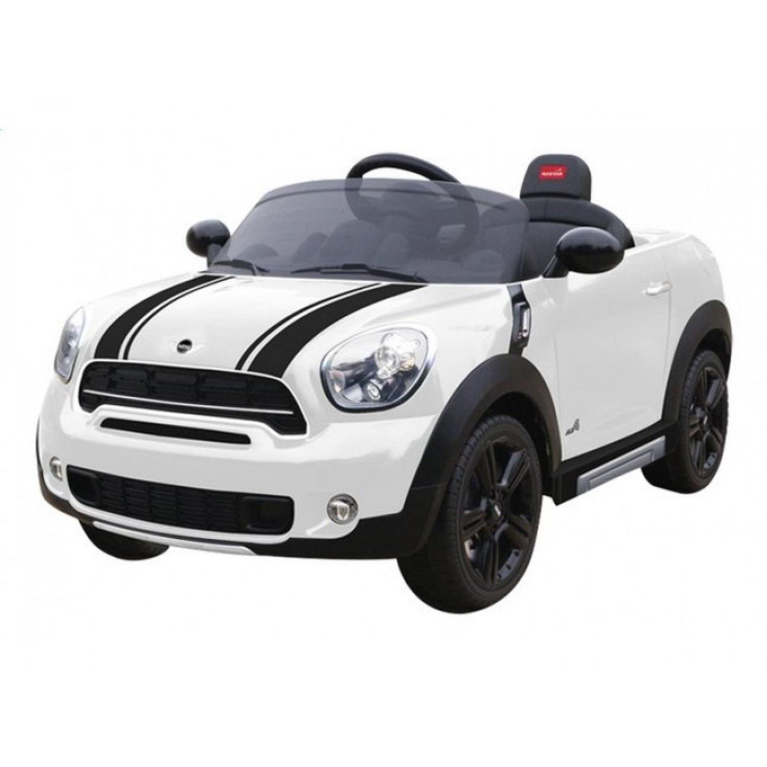 Mini Countryman Accu Auto Wit